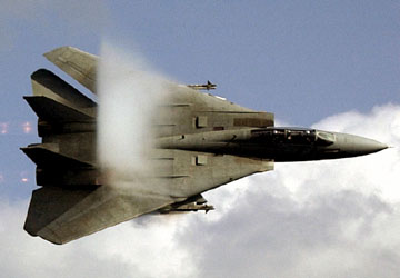 F 14 (戦闘機)の画像 p1_2